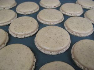 Macaron shells waiting to be filled.